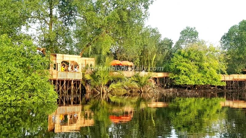 Hutan Mangrove Jadi Destinasi Wisata Di Medan Utara Dinas Kebudayaan Pariwisata Provinsi Sumatera Utara